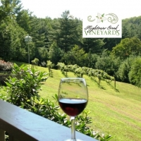 Hightower Creek Vineyards – Hiawassee, Georgia