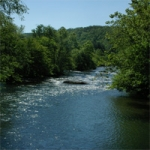 Fires Creek National Wildlife Reserve - Hayesville NC